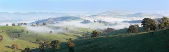 Mist_-_Ensay_region3