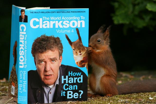 Red Squirrel reading a Jeremy Clarkson book © Susan Squirrel, 2011, Flikr